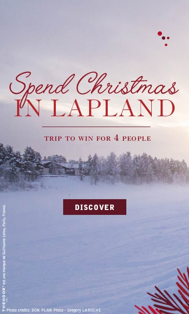 Spend Christmas in Lapland !