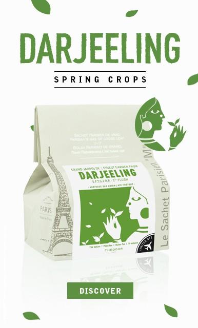 Darjeeling SFTGFOP 1st flush 'Jardin de Millikthong' -  Spring Crops