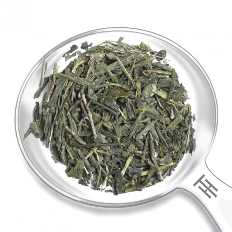 CHINA SENCHA DU MANDARIN