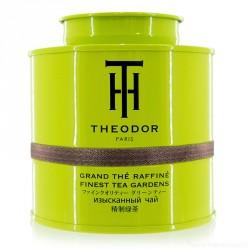 TEA - 'MAÎTRE FANG'
