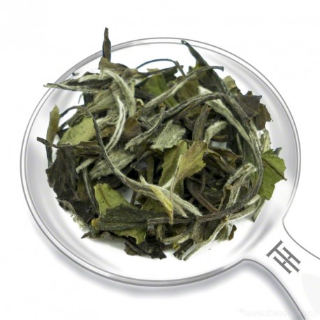 TEA - 'BAÏ MU TAN'
