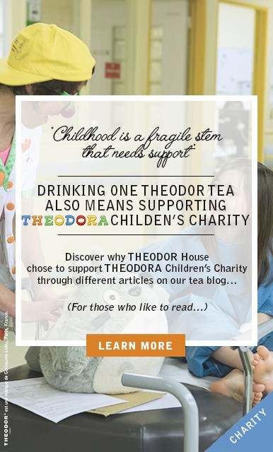 Theodor house supports Théodora children's charity
